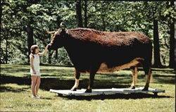 Old Ben - The World's Largest Steer