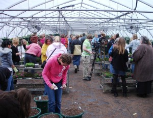 Volunteers help assemble flower baskets