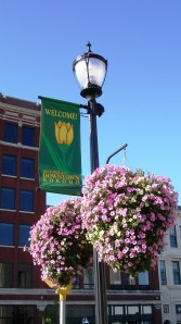 Flower baskets bloom in downtown Kokomo in 2008