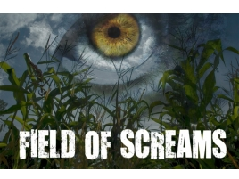 Guffey Acres Field of Screams corn maze