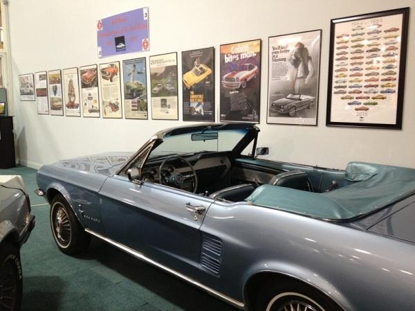 Mustang exhibit 3